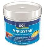 Aquarienreinigung & Aquarienpflege