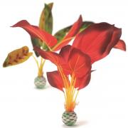 biOrb Aquarium Dekoration künstliche Seidenpflanzen Set groß grün & rot