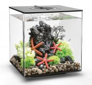 biOrb Nano-Aquarium Komplett-Set CUBE 30 LED schwarz 32 x 32 x 34,5 cm