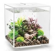 biOrb Nano-Aquarium Komplett-Set CUBE 30 LED weiß 32 x 32 x 34,5 cm