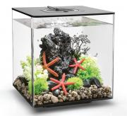 biOrb Nano-Aquarium Komplett-Set CUBE 30 MCR schwarz 32 x 32 x 34,5 cm