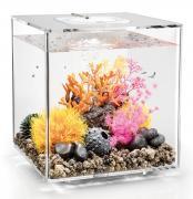 biOrb Nano-Aquarium Komplett-Set CUBE 30 MCR transparent 32 x 32 x 34,5 cm