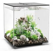 biOrb Nano-Aquarium Komplett-Set CUBE 60 LED schwarz 40 x 40 x 43,3 cm