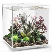 biOrb Nano-Aquarium Komplett-Set CUBE 60 LED weiß 40 x 40 x 43,3 cm