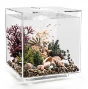biOrb Nano-Aquarium Komplett-Set CUBE 60 MCR transparent 40 x 40 x 43,3 cm