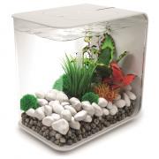 biOrb Nano-Aquarium Komplett-Set FLOW 15 LED weiß
