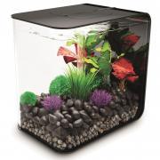 biOrb Nano-Aquarium Komplett-Set FLOW 30 LED schwarz