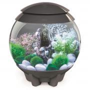 biOrb Nano-Aquarium Komplett-Set HALO 15 MCR grau