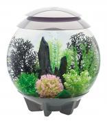 biOrb Nano-Aquarium Komplett-Set HALO 30 LED grau 40 x 46 cm