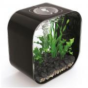 biOrb Nano-Aquarium Komplett-Set LIFE 30 MCR schwarz