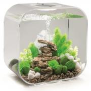 biOrb Nano-Aquarium Komplett-Set LIFE 30 MCR transparent