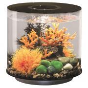 biOrb Nano-Aquarium Komplett-Set TUBE 15 LED schwarz