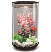 biOrb Nano-Aquarium Komplett-Set TUBE 30 LED schwarz