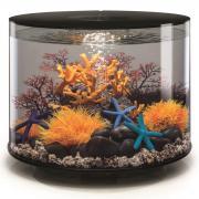 biOrb Nano-Aquarium Komplett-Set TUBE 35 LED schwarz
