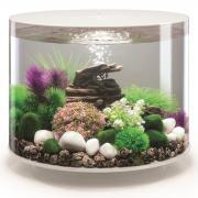biOrb Nano-Aquarium Komplett-Set TUBE 35 MCR weiß