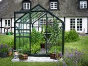Juliana Gewächshäuser Halls Popular 106 6,2 m² grün 3 mm Blankglas