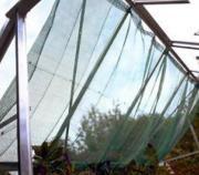 Juliana Gewächshäuser Zubehör Schattierung Grösse 150 x 350 cm in grün
