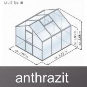 KGT Gewächshaus Lilie III anthrazit 2,97 x 3,23 m (9,6 m²) 10mm Polycarbonat UV-geschützt