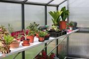 KGT Zubehör Tischgestell für Orchidee lV