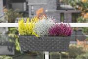 Merxx Blumenkasten 60 x 19 x 19 cm, Stahl mit Kunststoffgeflecht schwarz