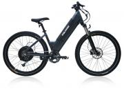 Polaris E-Bike Course grau 250W
