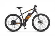REX E-Bike Alu-MTB Twentyniner 29 e9.5 Damen Herren 27-Gang Kettenschaltung 250 W schwarz matt